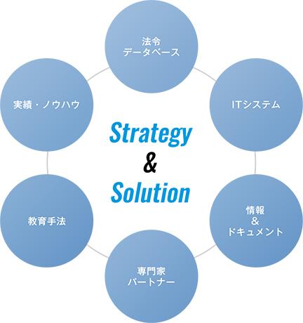 Strategy&Solution法令データベースITシステム情報&ドキュメント専門家パートナー教育手法実績・ノウハウ